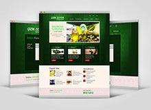 Web Tasarım Çalışması
