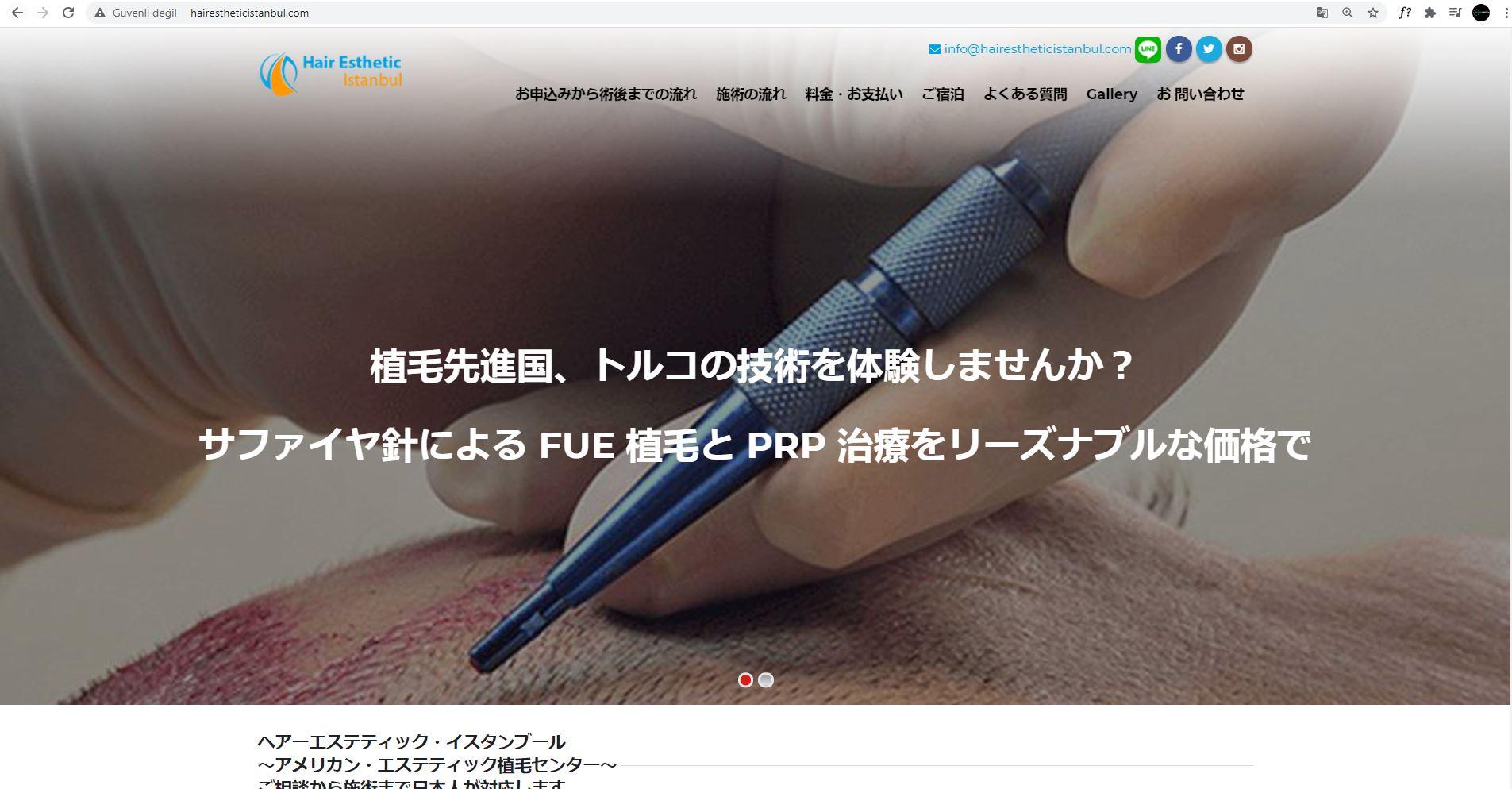 Web Tasarımı   Esthetic Japonya