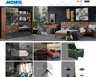 Montel Company in Furniture Sector has preferred our company.