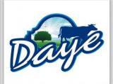 Daye Logo Tasarımı
